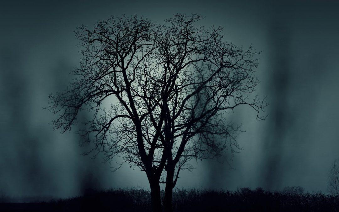 Il giorno più buio e la bellezza